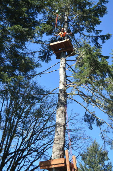 Tree To Tree Aerial Adventure Park's Aerial Adventure Course - Unique obstacle courses in an aerial playground of wobbly bridges, tight ropes, balance beams, and over 19 interspersed zip lines (and more!) set high in the trees.