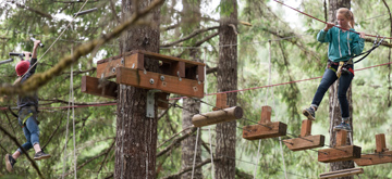 Image Of Men Doing An Aerial Team Building Event - Tree to Tree Adventure Park